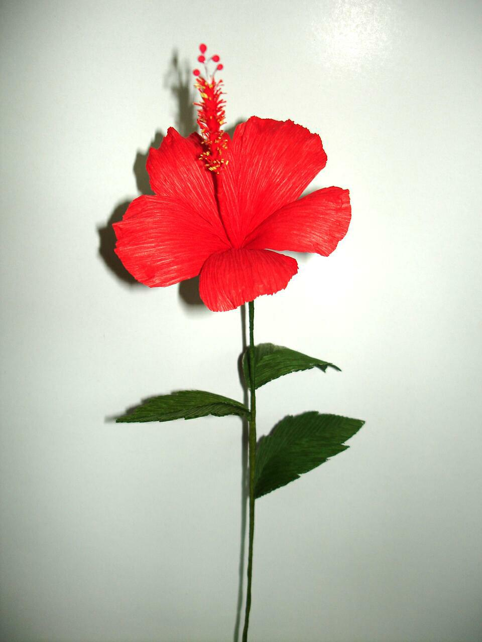 Resources for incredible and diversity exotic handmade flowers click to see larger picture pay pal certified red hibiscus flower izmirmasajfo